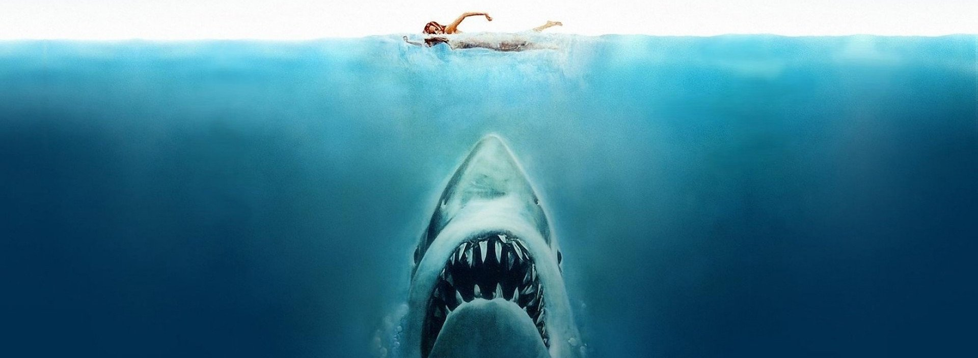 Film: Jaws feature image