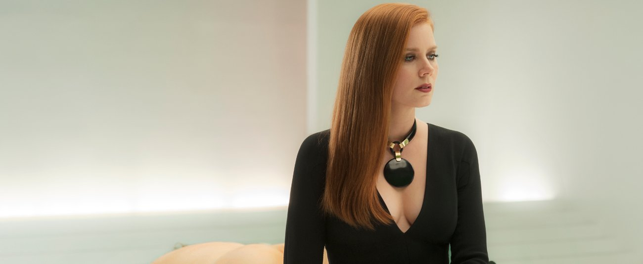 Film: Nocturnal Animals feature image